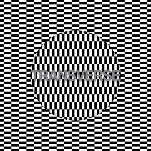 CarterTuttiVoidAlbumFront5001